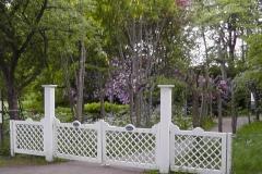 Blomster/rhododendron-have i nærheden af hotellet