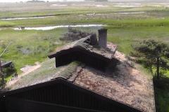 På engene bag ved hytten er der tit oversvømmelser, hvorved saltet føres ind på land.